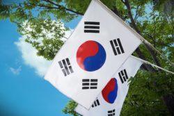 日韓のビジネス往来が再開